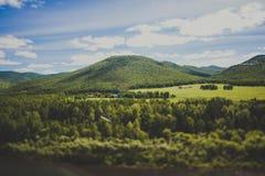 fotvandra trail Arkivfoton