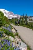 Fotvandra Trail för berg Arkivbild