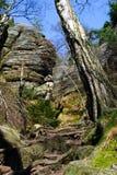 Fotvandra trail för Sachsen schweizare Royaltyfria Foton