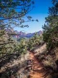 Fotvandra Trail Sedona Royaltyfria Bilder