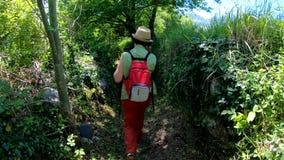 Fotvandra trekking i bergen Bakre sikt av baksidan av kvinnan som promenerar vägen med en ryggsäck arkivfilmer