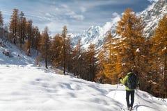 fotvandra vinter Arkivbild