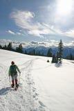 fotvandra vinterkvinna arkivbilder