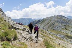 Fotvandrare i det Pirin berget, Bulgarien Royaltyfri Fotografi
