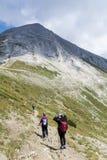 Fotvandrare i det Pirin berget, Bulgarien Arkivfoto