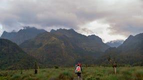 Fotvandrare i Rwenzori berg arkivbilder