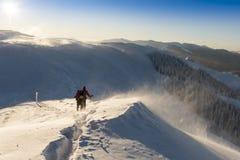 Fotvandrare i snöstorm Royaltyfria Bilder