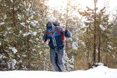 Fotvandrare i vinterberg Man med ryggsäcken som trekking i skog royaltyfri fotografi