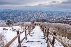 Fotvandrare i vinterberg, vit snö för vinterlandskap av Mounta Arkivbild