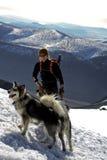 Fotvandrare med huskies Royaltyfria Bilder