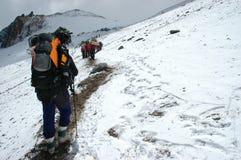 Fotvandrare på deras väg till det Aconcagua berget Royaltyfria Bilder