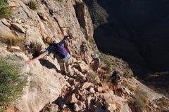 Fotvandrare på en brant smal slinga i Grand Canyon royaltyfri foto