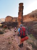 Fotvandrare på monumentslingan i Grand Canyon royaltyfri foto