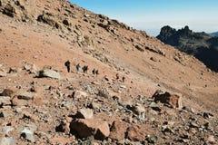 Fotvandrare på Mount Kenya Arkivfoton