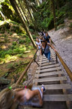 Fotvandrare på trappa, Adrspach vaggar staden, Tjeckien Arkivfoton