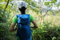 Fotvandrare som fotvandrar i rainforest arkivfoto