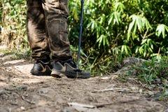 Fotvandrare som går i fotvandra slinga för berg i grön sommarskog med solsken fotografering för bildbyråer