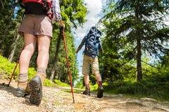 Fotvandrare som går med trekking poler Royaltyfri Fotografi