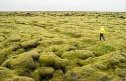 Fotvandrare som går på ett mossigt landskap i Island Royaltyfri Foto
