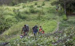Fotvandrare som går till och med den Baliem dalen Arkivfoton