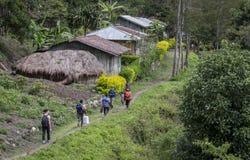 Fotvandrare som går till och med den Baliem dalen Royaltyfria Bilder