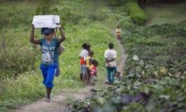 Fotvandrare som går till och med den Baliem dalen Fotografering för Bildbyråer