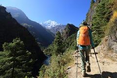 Fotvandrare som trekking på de himalaya bergen Arkivfoto
