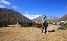 Fotvandrare som trekking på himalaya berg Arkivfoton