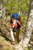 Fotvandrareflicka med ryggsäck i skog Royaltyfria Foton