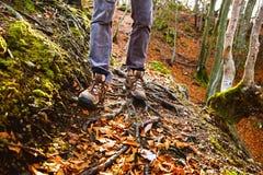 Fotvandrarekängor på skogslinga Fotvandra för höst Royaltyfria Foton