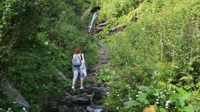 Fotvandrarekvinna med ryggsäcken som går på en skogslinga i bergen på bakgrunden en vattenfall fotvandra Affärsföretag in arkivfilmer