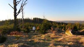 Fotvandraren för den unga mannen går i trevligt landskap på soluppgång från framdel arkivfilmer