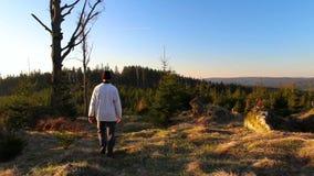 Fotvandraren för den unga mannen går i trevligt landskap på soluppgång från tillbaka stock video