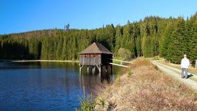 Fotvandraren för den unga mannen går på banan i trevligt landskap med dammet, träbyggnad och skogen arkivfilmer