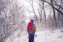 Fotvandraren med den lilla hunden går i vinterskogen Arkivfoton