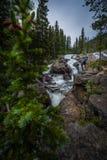 Fotvandraren nära Jasper Creek Falls Colorado Indian når en höjdpunkt Wildern Royaltyfria Foton