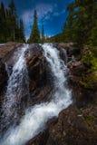 Fotvandraren nära Jasper Creek Falls Colorado Indian når en höjdpunkt Wildern Arkivfoton