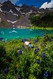 Fotvandraren vilar nära den blåa sjön Ridgway Colorado arkivfoton