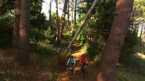 Fotvandrarepar som cyklar i skogen stock video