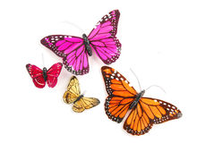 Fou colorful butterflies Royalty Free Stock Photography