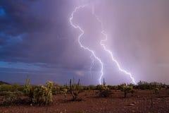 Foudre dans le désert photographie stock libre de droits