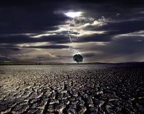 Foudre et l'arbre Image libre de droits
