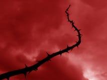 Fouet d'enfer Image libre de droits