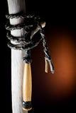 Fouet en cuir noir Images libres de droits