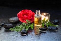 Fougère, bougie, huile et pierres noires images libres de droits