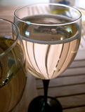Fougeres avec le champagne ou le vin mousseux. Photos libres de droits