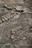 Fouille d'archéologie image stock