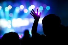 Foule au concert photo libre de droits