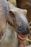 Foulkii Hadrosaurus Στοκ εικόνες με δικαίωμα ελεύθερης χρήσης