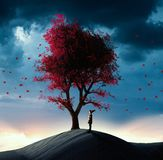 Found a big tree. Kid looking up to a red tree in the desert Royalty Free Stock Images